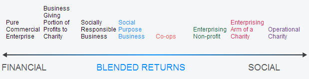 Measuring the Success of a Social Purpose Business